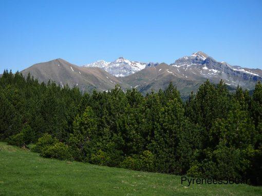 Pico de Tendenera 1